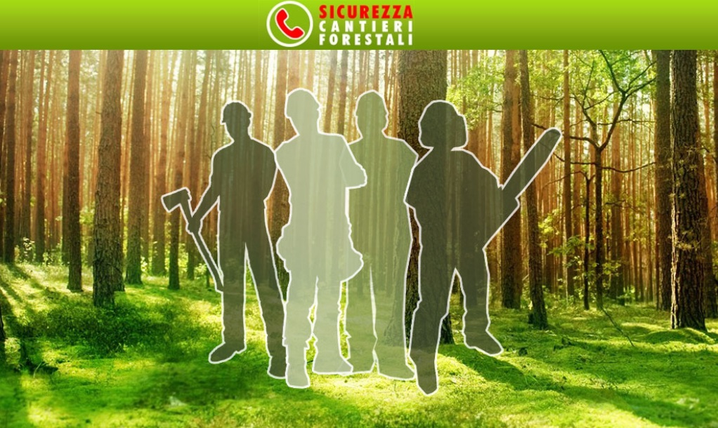 App per smartphone e tablet 'Cantieri forestali sicuri'
